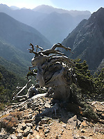 Mt. Giglios Hike