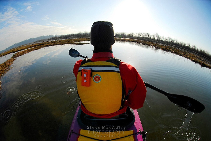Sea kayaking in the Nisqually National Wildlife Refuge, WA.