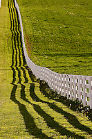 White wooden fence running across horse farm at sunset, Calumet horse farm, Lexington, Kentucky