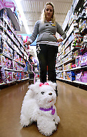 STAFF PHOTO BEN GOFF  @NWABenGoff -- 12/16/14<br /> Rachel Bracht, assistant manager for toys and electronics, demonstrates a FurReal Friends Get Up &amp; GoGo My Walkin' Pup toy at the Walmart Supercenter on Pleasant Crossing Boulevard in Rogers on Tuesday Dec. 16, 2014. The toy was one of the top 20 picked by children through Walmart's Chosen by Kids program.