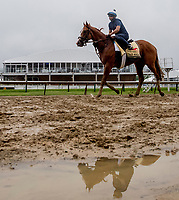 BALTIMORE, MD - MAY 16: Good Magic returns to the barn after galloping in preparation for the Preakness at Pimlico Race Course on May 15, 2018 in Baltimore, Maryland (Photo by Scott Serio/Eclipse Sportswire/Getty Images)