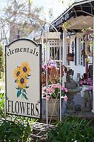 Elementals Flowers at the Arbor in Los Alamitos California
