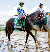 LOUISVILLE, KY - MAY 06: Always Dreaming connections celebrate in winners circle after winning the 143rd Kentucky Derby on Kentucky Derby Day at Churchill Downs on May 6, 2017 in Louisville, Kentucky. (Photo by Sue Kawczynski/Eclipse Sportswire/Getty Images)