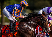 SARATOGA SPRINGS, NY - AUGUST 26: Idaho #7, ridden by Ryan Moore race in the Sword Dancer Stakes at Saratoga Race Course on August 26, 2017 in Saratoga Springs, New York. (Photo by Alex Evers/Eclipse Sportswire/Getty Images)
