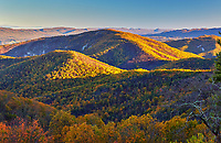 Autumn colors as viewed from Brown Mountain Overlook along Skyline Drive in the south district of the park