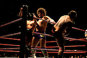 December 30, 2007. Raleigh, NC.. WWE wrestling event at the RBC Center in Raleigh, NC.. Carlito, center, prepares to smash the head of Cody Rhodes into the turnbuckle. His partner, Santino Marella, prepares to enter the ring.