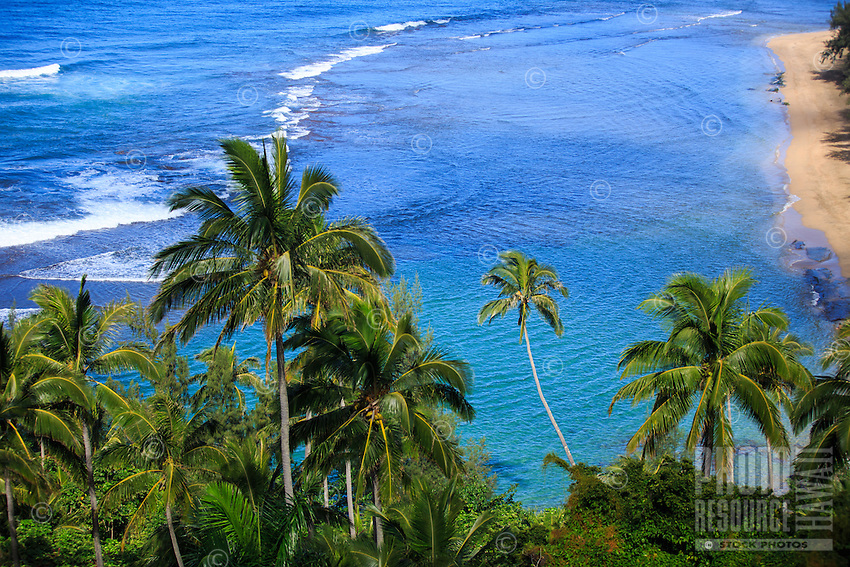 The view from the quarter-mile marker of the Kalalau Trail is one of the best of the trail's entire 11 miles. Ke'e Beach, clean ocean waters, and coconut tress swaying in the breeze indicate that this is quintessential Kaua'i.