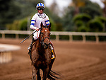 MAY 27: Core Beliefs with Florent Geroux after the Gold Cup at Santa Anita Park in Arcadia, California on May 27, 2019. Evers/Eclipse Sportswire/CSM