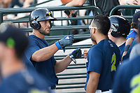 Designated hitter Tim Tebow (15) of the Columbia Fireflies is congratulated by Desmond Lindsay after scoring a run in a game against the Lexington Legends on Thursday, June 8, 2017, at Spirit Communications Park in Columbia, South Carolina. Columbia won, 8-0. (Tom Priddy/Four Seam Images)