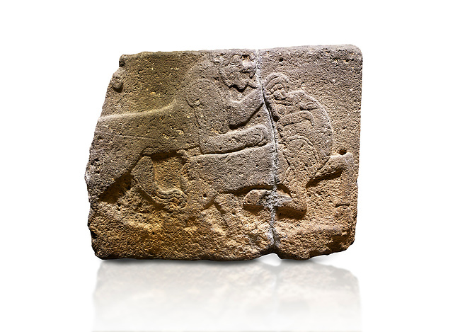 Hittite monumental relief sculpted orthostat stone panel of a Procession. Basalt, Karkamıs, (Kargamıs), Carchemish (Karkemish), 900-700 B.C. Anatolian Civilisations Museum, Ankara, Turkey. Two animals struggling with each other. The lion attacking the bull holds the bull's chin and turns it backwards.  <br /> <br /> Against a white background.