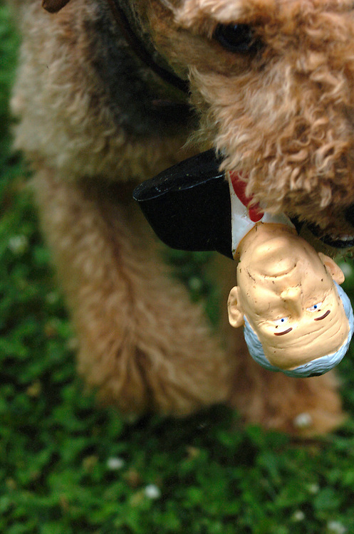 McCoy the Airedale Terrier  with George W. Bush from politicalpettoys.com.