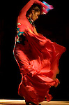 A Flamenco dancer