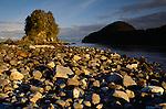 Seastack, Taylor Bay, Glacier Bay National Park and Preserve, Alaska