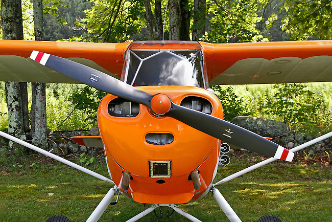 "A front view of an orange Aeronca with white trim that looks like a happy face. The propeller is on a diagonal adding emphasis to the orange ""nose!"" The background consists of grass and the woods behing the airfield at the 2010 Wings 'n' Wheels Showcase."