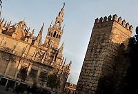 Oblique view of Seville Cathedral and a crenelated wall of the Real Alcazar on the right, Andalucia, Spain, pictured on December 26, 2006 in the winter afternoon light, showing the Sacristia Mayor dome, and Giralda Minaret. Seville Cathdral is the largest Gothic building in the world. It was converted from the original 12th century Almohad Mosque on this site during the 16th century and the original Moorish entrance court and Giralda Minaret are both integrated in the cathedral. Inside is the tomb of the explorer Christopher Columbus (1451-1506). The Sacristia Mayor dome was rebuilt after an earthequake in 1888. Picture by Manuel Cohen