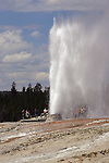 Yellowstone National Park - Beehive Geyser