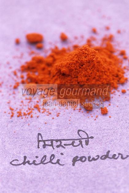 Asie/Inde/Maharashtra/Bombay : Les épices dans la cuisine indienne - Piment en poudre
