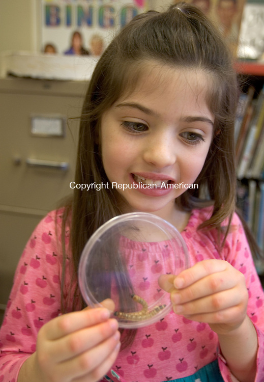 WOODBURY CT. 30 December 2013-123013SV10-Josie Drago, 7, of Southbury checks out the Mealworms during a program called &quot;How Cool is That?!&quot; at the library in Woodbury Monday. This class was called Mealworm Madness. Children discussed food and color preference, texture and length of mealworms while learning.<br /> Steven Valenti Republican-American