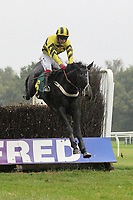 Flichity ridden by Joe Cornwall in jumping action in the Half Term Racing, Fakenham 26th October Handicap Chase