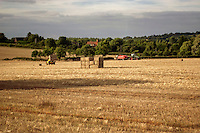 English Countryside in High Summer viewed from a train