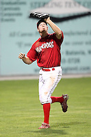 September 5, 2009:  Left Fielder Kyle Conley of the Batavia Muckdogs catches a fly ball during a game at Dwyer Stadium in Batavia, NY.  The Muckdogs are the Short-Season Class-A affiliate of the St. Louis Cardinals.  Photo By Mike Janes/Four Seam Images