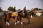 OCT 28: Breeders' Cup Classic entrant Seeking the Soul, trained by Dallas Stewart,  at Santa Anita Park in Arcadia, California on Oct 28, 2019. Evers/Eclipse Sportswire/Breeders' Cup