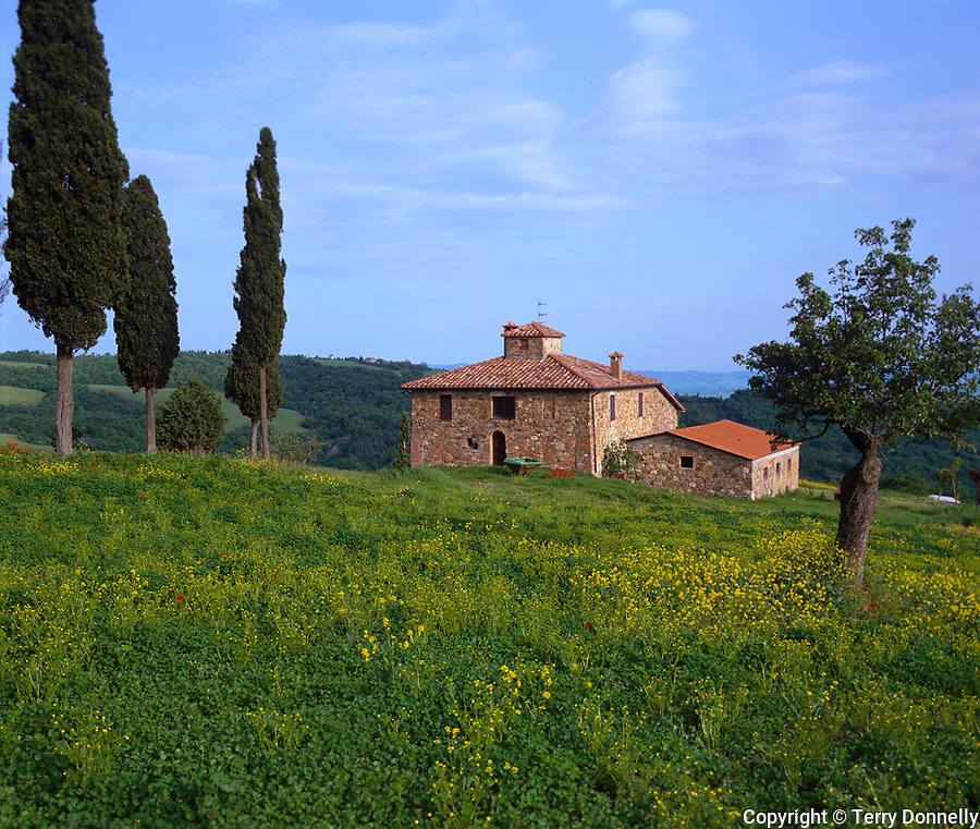 Tuscany, Italy      <br /> Stone farmnouse among the rolling hills and valley of Val d'Orcia near the hilltown of Contignano