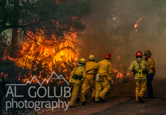 August 19, 1992 Angels Camp, California -- Old Gulch Fire— Firefighters rush with hoses to put down fire on Fullen Road. The Old Gulch Fire raged over some 18,000 acres, destroying 42 homes while threatening the Mother Lode communities of Murphys, Sheep Ranch, Avery and Forest Meadows.