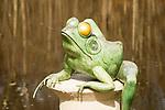 Bronze frog.