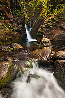 A waterfall deep within the heart of Kauai in the Waialeale wilderness