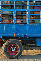 Blue truck loaded with colorful gas bottles, Quoseir Village, Red Sea, Egypt.