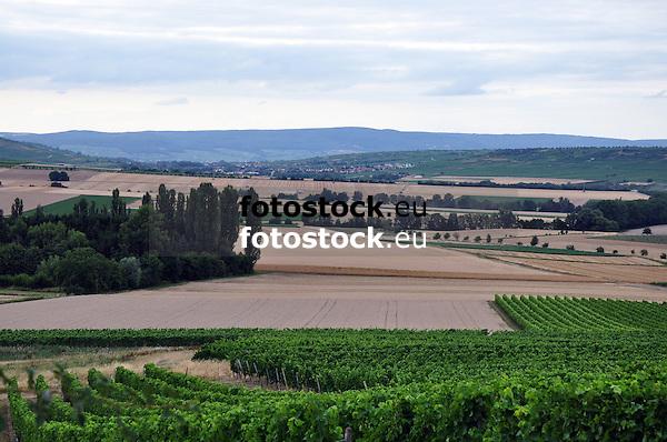Getreidefelder und Weinberge im Rheinhessischen Hügelland