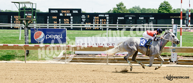 Just A Wildflower winning at Delaware Park on 7/21/14