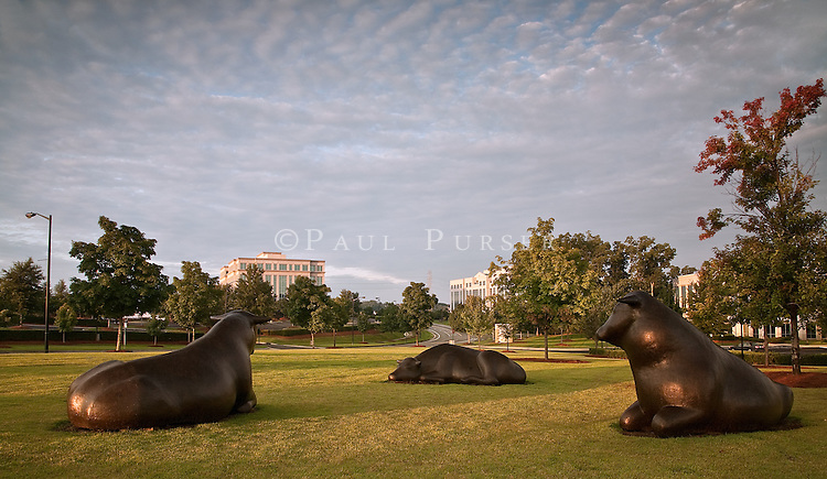 The Ballantyne Bulls are 2000 lb sculpted bulls by artist  Peter Woytuk <br />