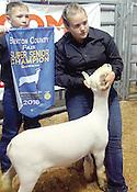 2016 Benton County Fair Junior Livestock Auction