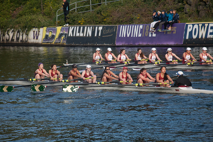 Rowing, Seattle, The Husky Open, April 4 2015, rowing regatta, Montlake Cut, Western Washington University, Womens Second Varsity eight, College W 2V8, crew, Washington State, Pacific Northwest, USA, rowers, racing, sports, water sports, rowing boats, rowing race, regatta, competition, women rowing,women rowing