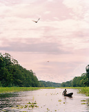 PERU, Amazon Rainforest, South America, Latin America, man on canoe in Yanayacu River
