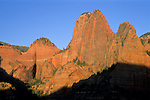 Red cliffs at sunset, Kolob Canyon, Zion National Park, UTAH