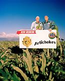 USA, California, Carmel, a field of Artichokes on HWY 1 between Carmel and Moss Landing