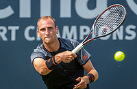 Rosmalen, Netherlands, 11 June, 2019, Tennis, Libema Open, Thiemo de Bakker  (NED)<br /> Photo: Henk Koster/tennisimages.com