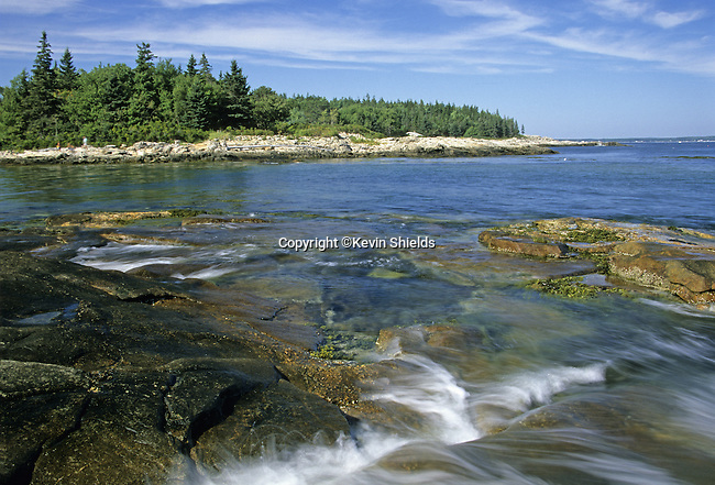 Tidal inlet at Reid State Park, Maine, USA, showing the rocky coastline with the spruce forest growing near the salt water of the Atlantic Ocean.
