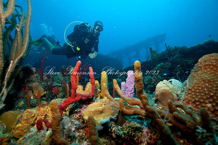 Wreck of The RMS Rhone.Salt Island.BVI