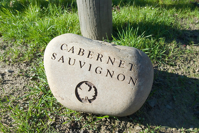 Stone marks vineyard at Robert Mondavi winery