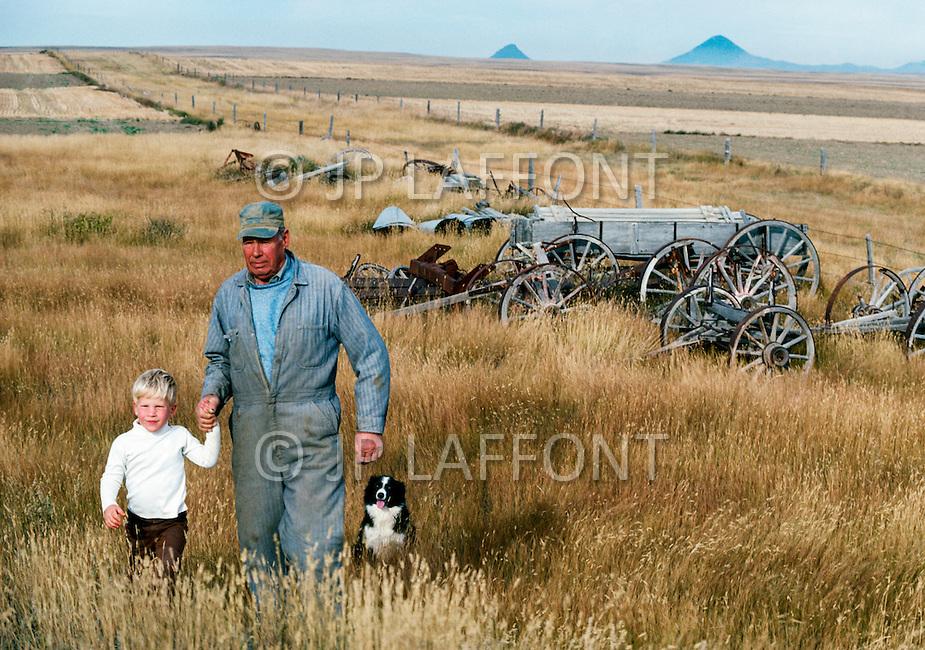 1978, Montana, USA --- Wheat harvest in Montana. --- Image by © JP Laffont