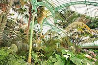 Belgique, Bruxelles, Laeken, le domaine royale du château de Laeken, les serres de Laeken durant la période d'ouverture au public au printemps, la serre du Congo // Belgique, Bruxelles, Laeken, the royal castle domain, the greenhouses of Laeken in spring. In the greenhouse of Congo.