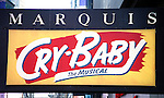The new musical, Cry-Baby, based upon the Universal Pictures film written and directed by John Waters, features songs by David Javerbaum and Adam Schlesinger, with a book by Mark O'Donnell and Thomas Meehan. Mark Brokaw directs, with choreography by Rob Ashford. John Waters serves as creative consultant..Opening Night Theatre Marquee at the Marquis Theatre in New York City..April 13, 2008.© Walter McBride /  .