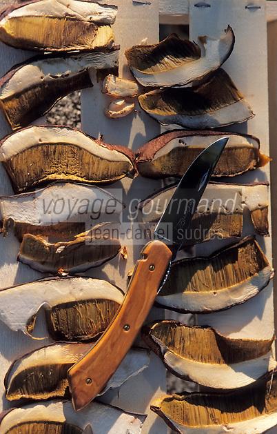 Europe/France/Limousin/19/Corrèze/Chaumeil: Cèpes séchant et couteau corrèze chez Marcelle Ségurel de l'auberge des Bruyères