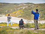 Tourists and small soda lake, Carrizo Plain National Monument, San Luis Obispo County, Calif.