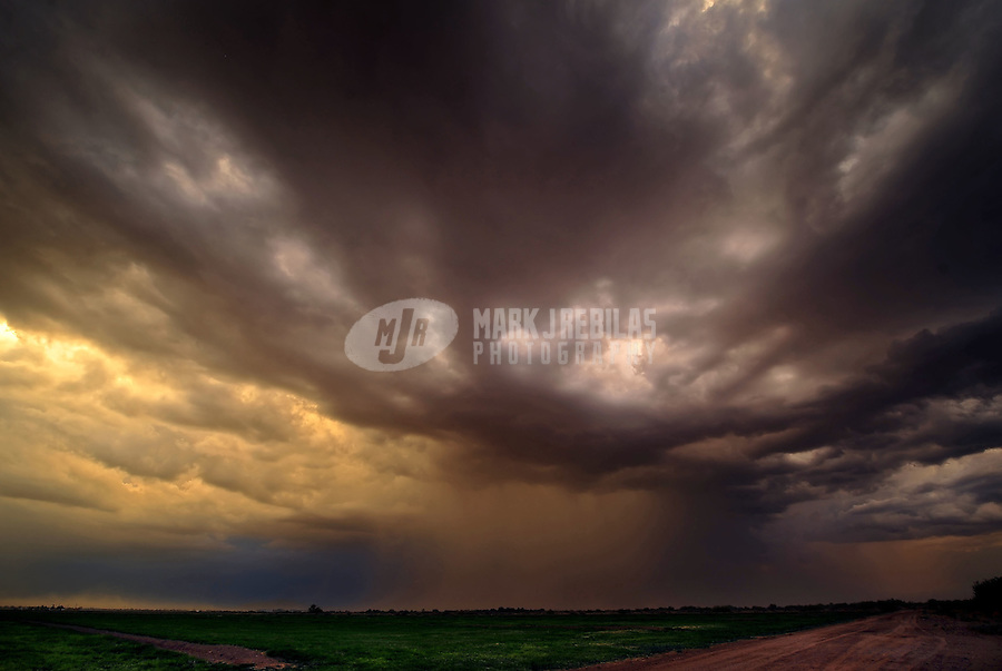 desert weather storm chaser chasing clouds sky Arizona sunset farm farmland field rain