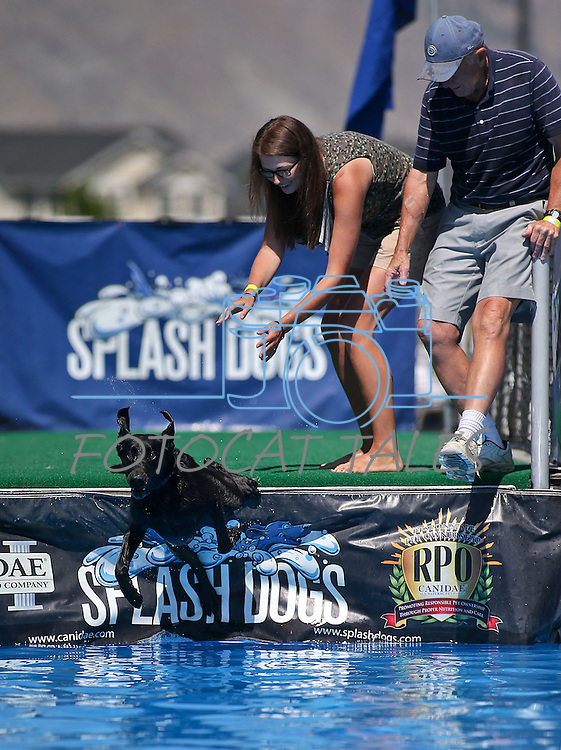 Images from the Splash Dogs event at Carson Valley Inn in Minden, Nev., on Sunday, Aug. 11, 2013. <br /> Photo by Cathleen Allison